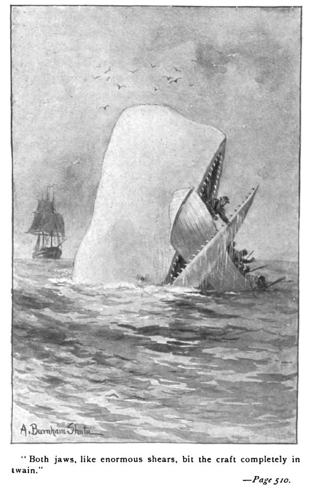 Moby_Dick_Augustus Burnham Shute